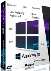 Microsoft® Windows® 10 x86-x64 Ru 20H2 8in2 Orig-Upd 10.2020 by OVGorskiy 2DVD